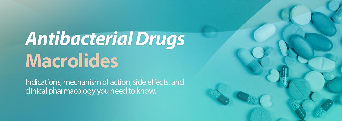 macrolides pharmacology